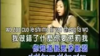 pinyin不要用我的愛來傷害我bu yao yong wo de ai lai shang hai wo.avi