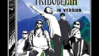 Tribo de Jah - Um Só Amor