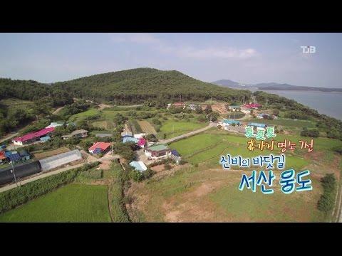 TJB생방송투데이-휴가지 명소 7선, 신비의 바닷길 서산 웅도(2016.07.28)