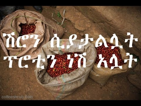 Funny Ethiopian new saying part 3