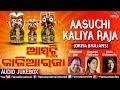 Aasuchi Kalia Raja | Mohd Aziz | Kavita Krish..| Chandrani |JUKEBOX| Oriya Bhajans Devotional Songs