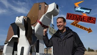 GIANT DOG! Strangest Hotels #2 VR180 3D Experience