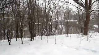 Участок в Подгорцах ,11 км от Киева,январь 2010 года(Участок в Подгорцах с хаткой 19 века.Могу продать,могу совместно использовать под социально значимый проек..., 2010-01-19T13:05:35.000Z)
