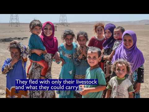 IOM Distributes Non-Food Items in Badoush, Iraq