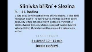 Repeat youtube video Slinivka a Slezina