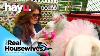 Vanderpump Buys World's Smallest Horse | Real Housewives of Beverly Hills