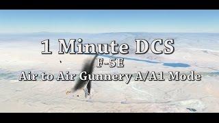 1 Minute DCS - F5 E Air to Air Guns A/A1 Mode Tutorial