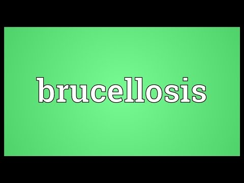 Brucellosis Meaning