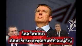 Линас Линкявичюс обвинил Россию в прекращении действия ДРСМД