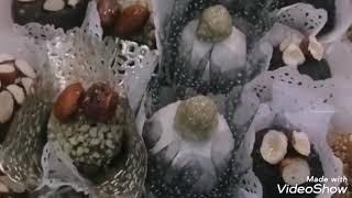 عيد مبارك سعيد.. أول فيديو ان شاء الله بالقناة... تجريبي فقط😍😍😍😍😘😘🌹🌹🌹عساكم من عواده أحبائي