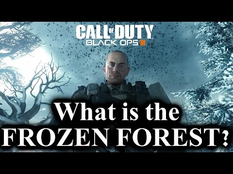 Black Ops 3: What is the Frozen Forest?