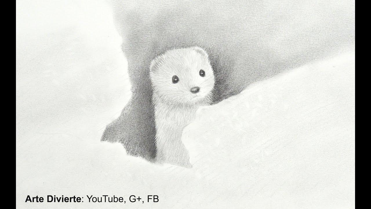 Dibujando animales cmo dibujar un armio en la nieve Arte