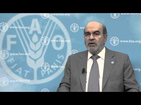 FAO Director-General José Graziano da Silva UN-REDD Programme video statement
