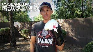 16 Ounce FIGHTTIPS Boxing/ Training Glove Review