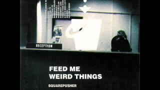 Squarepusher - Squarepusher Theme (8-bit Cover by Bob)