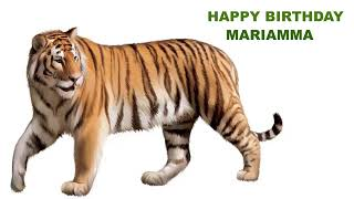 Mariamma   Animals & Animales - Happy Birthday