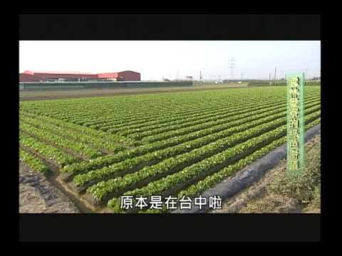 雲林麥寮的綠色奇蹟-善耕台灣第06