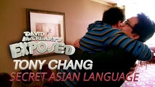 Secret Asian Language, Tony Chang - David McCreary