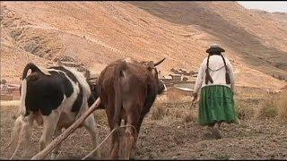 La fonte des glaciers dans les Andes menace les agriculteurs boliviens - science