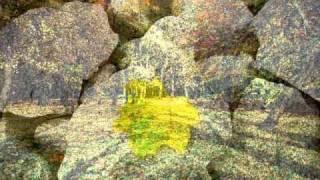 Antonio Vivaldi - Autumn (Allegro)