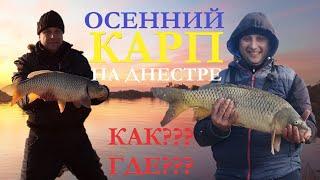 Рыбалка на Днестре Закрытие сезона УДАЛОСЬ Как поймать карпа 22 ноября 2020