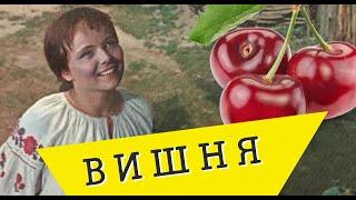 НОВИНКА!!!Тяни-Толкай и Светлана Питерская-ВИШНЯ🍒| ХИТ 2018