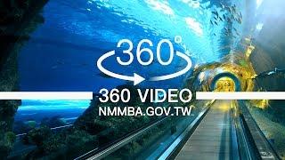 海生館VR360度影片:珊瑚王國館-海底隧道第一段