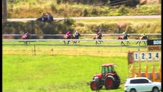 Cabriole at Bowraville Races 26/12/13