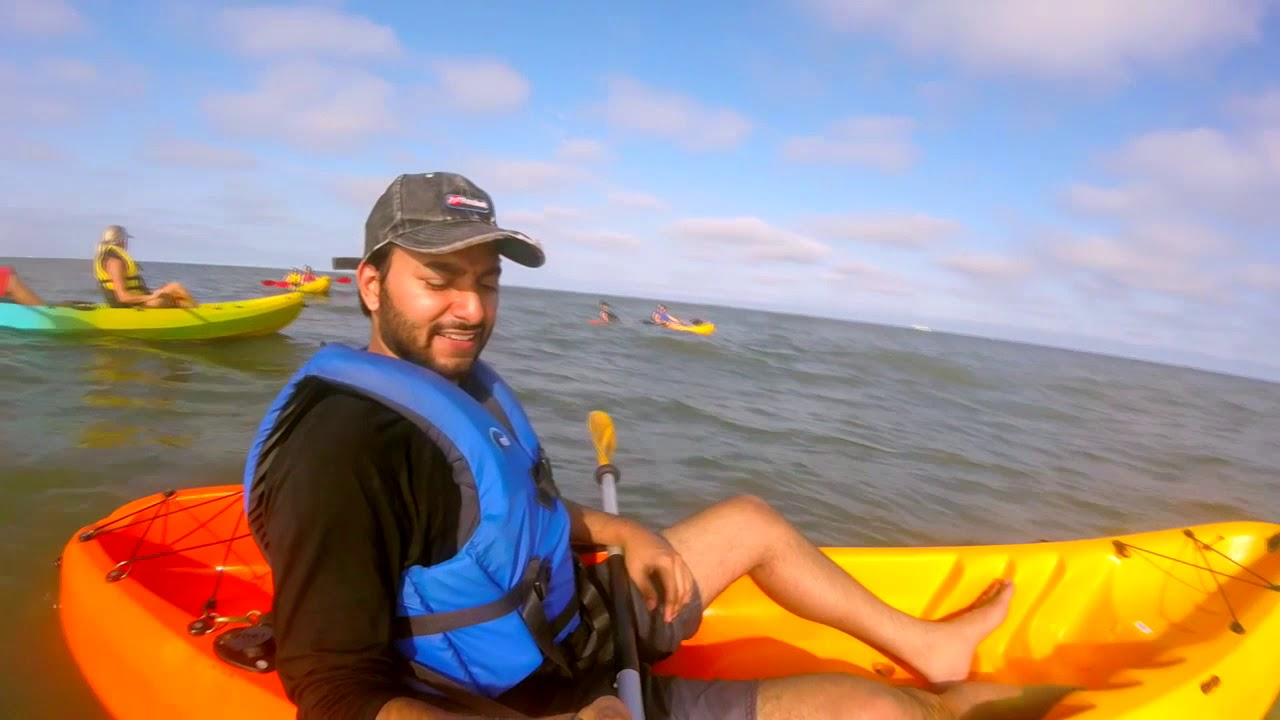 Kayaking With Dolphins Virginia Beach
