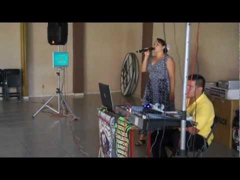 MUY BUENA VOZ, Luz, Sonido, Vídeo y Karaoke Aries