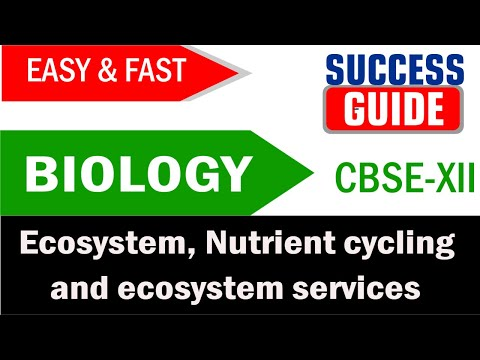 CBSE XII Biology Ecosystem -7 Nutrient cycling and ecosystem services - Success Guide