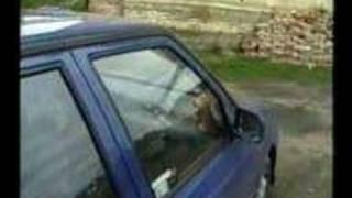 Skoda Felicie Tuning autoalarm