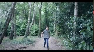 The Great Hairdryer Adventure 3 Trailer