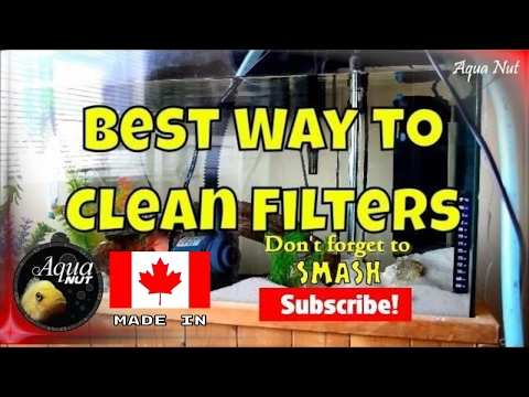 How to Clean Canister / HOB Filter | Best Way to Clean Aquarium Filters