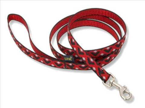 Newsletter #2  Dog Leash Problems Part 1