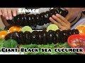 ASMR GIANT BLACK SEA CUCUMBER ( Crunchy Eating Sounds) No Talking