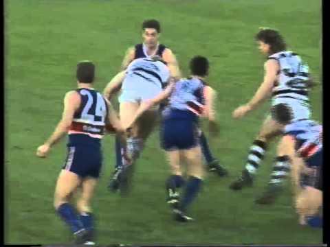 FNWB.com.au - 1994: Round 17, Footscray v Geelong  Q4