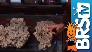 How To Set Up A Saltwater Aquarium - Episode 1: Reef Tanks Made Fun And Easy