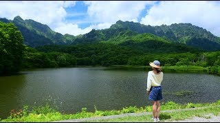 夏花が咲き誇る戸隠高原・4K撮影