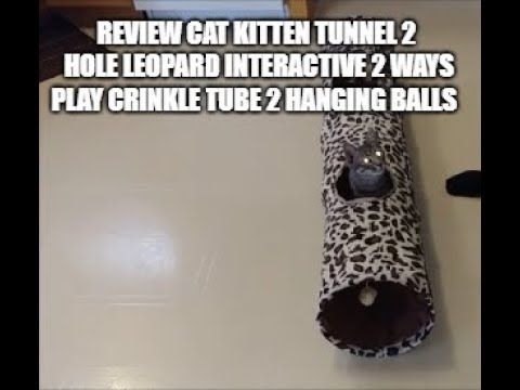 Review Pawz Road Cat Kitten Tunnel 2 Holes Active Play Crinkle Tube Hanging Balls Small Pets Toy.