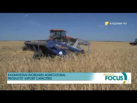 Kazakhstan increases agricultural products' export capacities