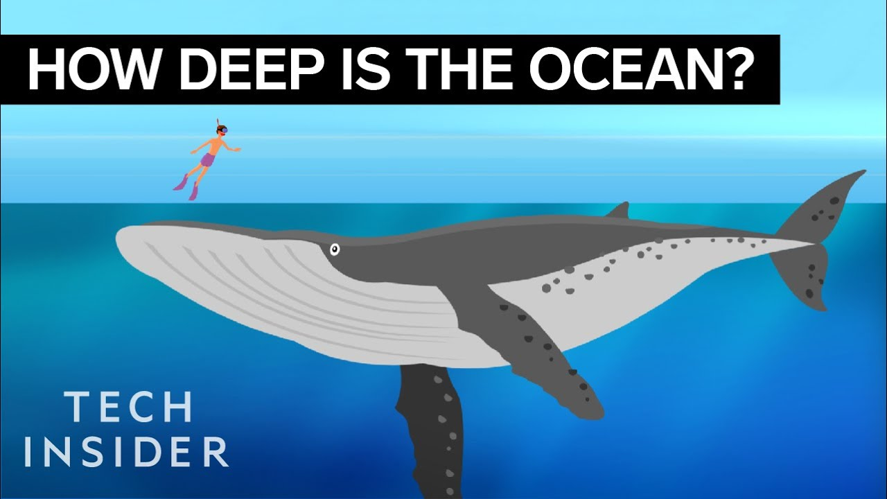 this incredible animation shows how deep the ocean really is [ 1280 x 720 Pixel ]