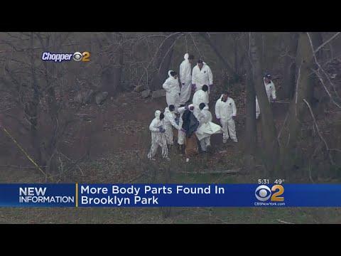 Body Parts Found In Brooklyn Park