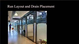 Design Details with Hafen and Lewis: Ways to keep your veterinary clinic clean
