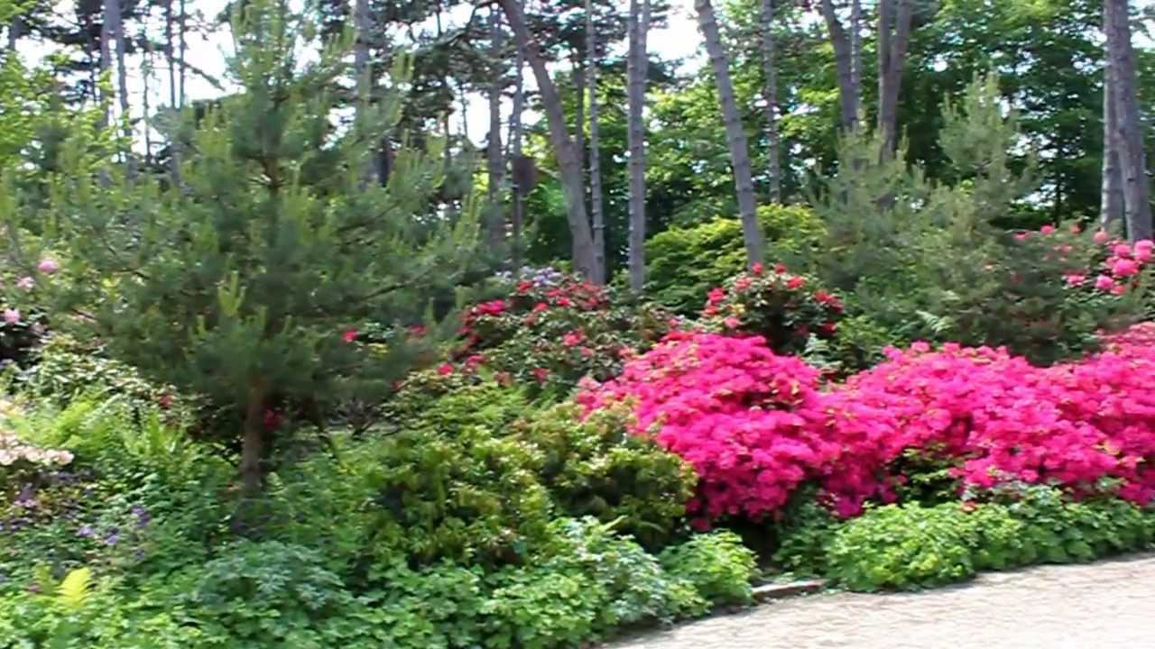 Parc Floral de Paris, Bois de Vincennes  YouTube ~ Parc Floral Bois De Vincennes
