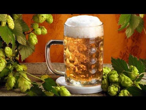Как производят безалкогольное пиво. Из чего делают пиво