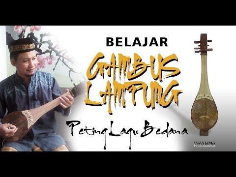 BELAJAR GAMBUS LAMPUNG PETING BEDANA