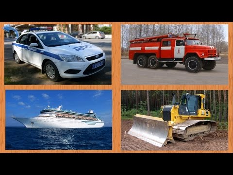 Учим виды транспорта и техники.  Развивающее видео для деток