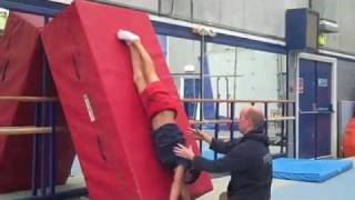 Learning the Healy on High Bar