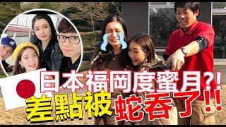 Download 【VLOG #20】🇯🇵 日本福冈度蜜月?!被QiuWen背叛 差点被蛇吞了!说好一起的呢?